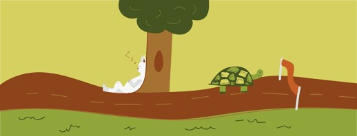 The Tortoise and the Race image