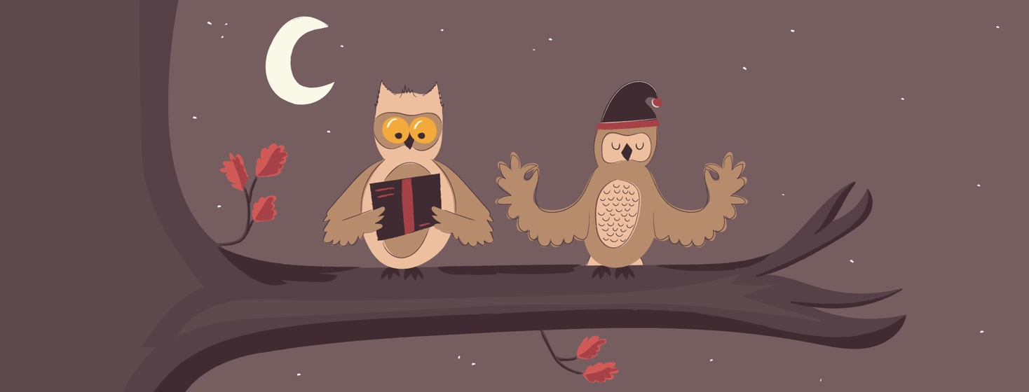 Two owls sitting on a branch, one reading and one meditating while wearing a night cap