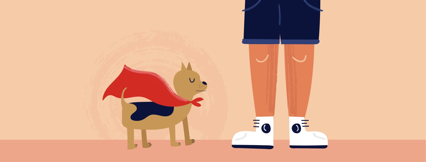 a dog in a superhero cape standing at the feet of its owner