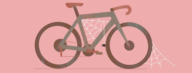 An unused bicycle collects cobwebs