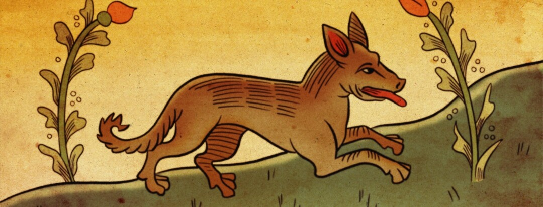 A wolf illustrated in a medieval style
